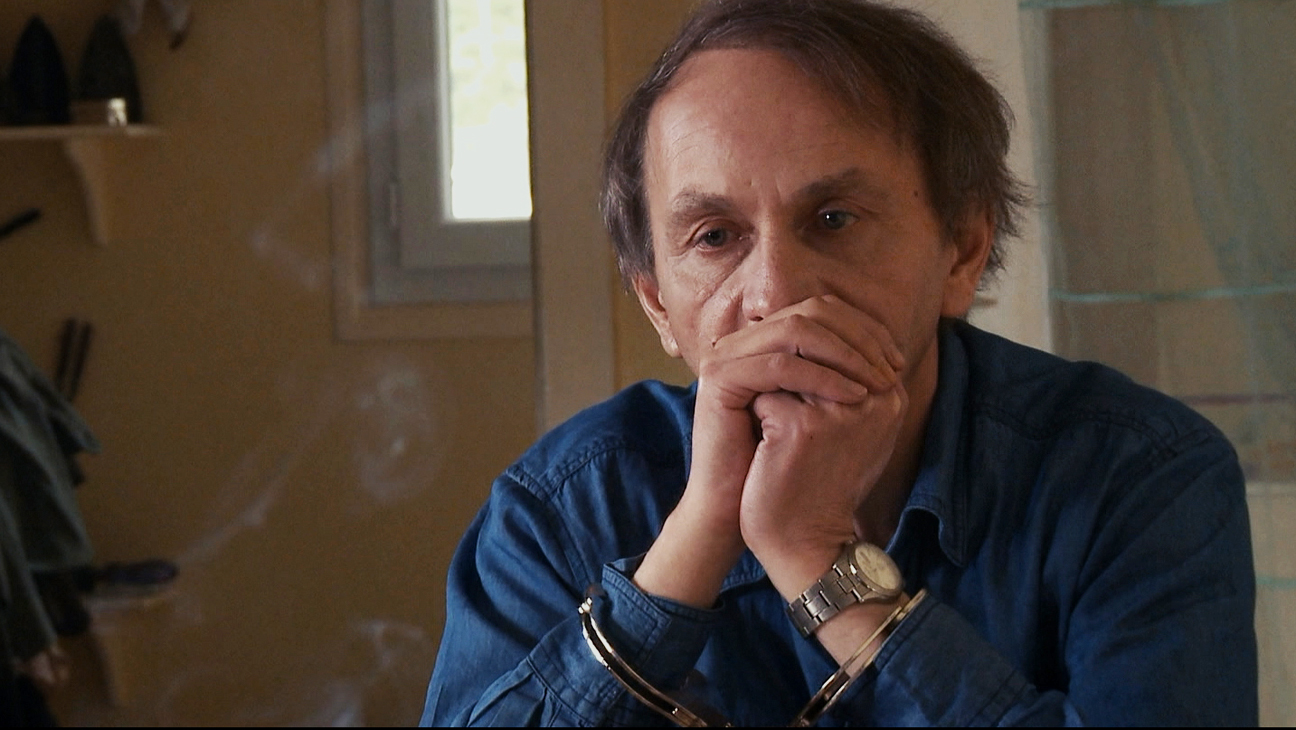 the_kidnapping_of_michel_houellebecq