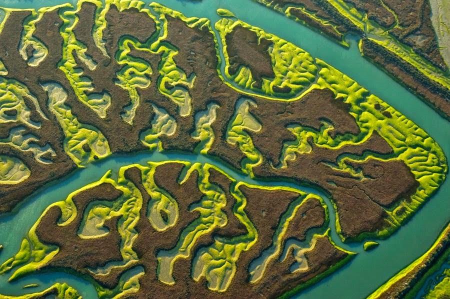 la-isla-mínima-marismas